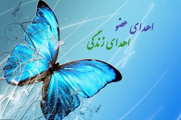 نهمین اهدای عضو امسال در کهگیلویه وبویراحمد