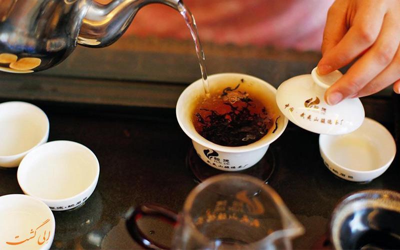 با مزارع چای دنیا آشنا شوید