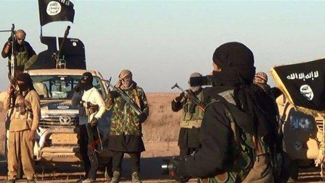 یک منبع عراقی: اروپایی ها خواهان انتقال 13000 داعشی به عراق شدند