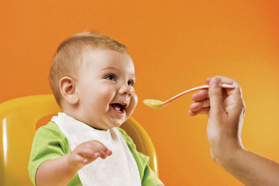 فراوری مکمل غذایی نوزاد با جوانه حبوبات ، مکملی برای تامین پروتئین نوزادان