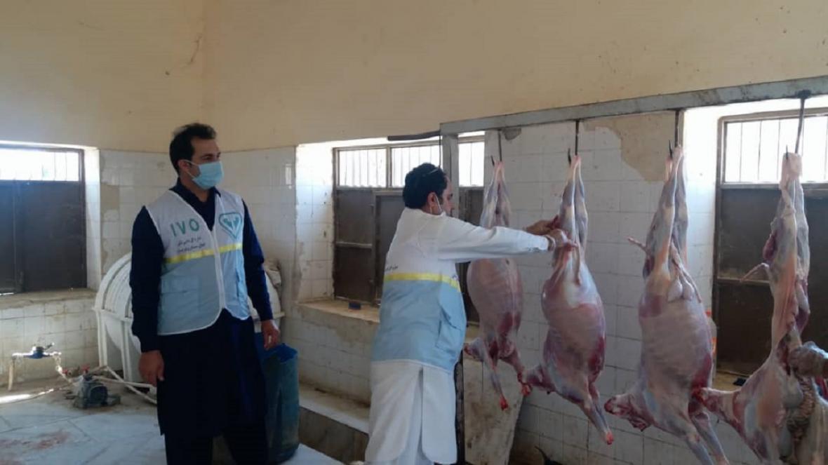 نظارت بر دام های قربانی ویژه ایام محرم در نیکشهر