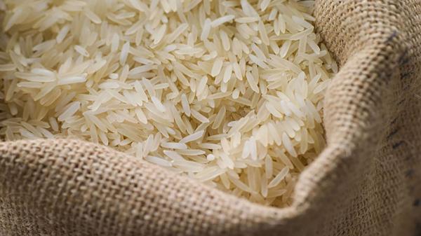رکوردشکنی بی سابقه قیمت برنج