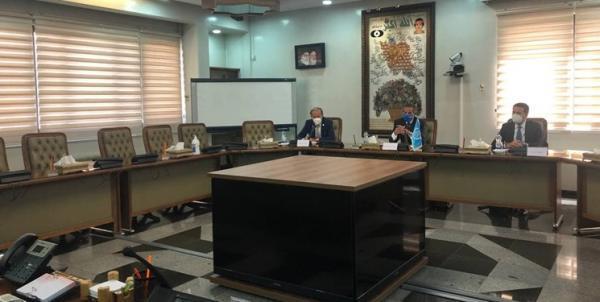 مدیرکل آژانس بین المللی انرژی اتمی با محمد اسلامی ملاقات کرد